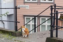 St. Mary Church, Bergen, Norway