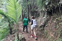 Des Cartiers Trail, St. Lucia