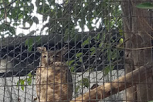 Applegate Park Zoo, Merced, United States