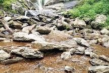 Tom's Creek Falls, Asheville, United States