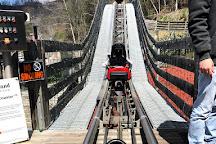 Gatlinburg Mountain Coaster, Gatlinburg, United States