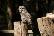 Bridlington Animal Park, Bridlington, United Kingdom