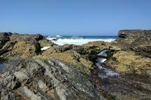 Snapper Rocks, Coolangatta, Australia