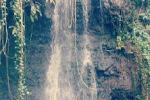 The Water Gardens of Vaipahi, Taravao, French Polynesia