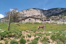 Zoo del Pirineu, Oden, Spain
