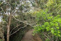 Mount Kinabalu National Park, Kota Kinabalu, Malaysia
