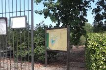 Cercado del Cipres, Andujar, Spain