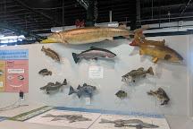 Aquatic Resource Center, Put in Bay, United States