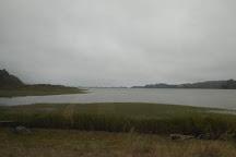 Bolinas Lagoon, Bolinas, United States