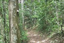 Bosque Estatal De Guajataca, Isabela, Puerto Rico