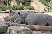 Khao Kheow Open Zoo, Si Racha, Thailand