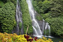Banyumala Twin Waterfalls, Wanagiri, Indonesia