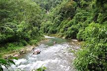 Bukit Lawang Travel, Bukit Lawang, Indonesia