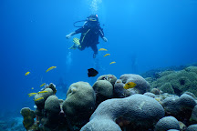 Twin Divers Curacao, Curacao