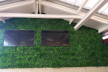 Silk Trees and Plants Quality Artificial Plants, Port Macquarie, Australia