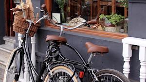 Bicicletas Vintage Perú - Alry Cycles 1