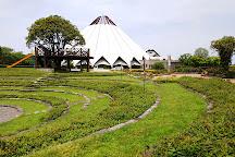 Izumi City Crane Museum, Crane Park Izumi, Izumi, Japan