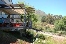 Thelema Mountain Vineyards, Stellenbosch, South Africa