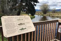 Klamath Fish Hatchery, Klamath Falls, United States