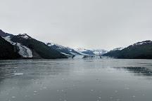 College Fiord, Alaska, United States