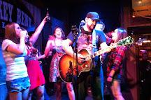 Hick Chick Tours, Nashville, United States