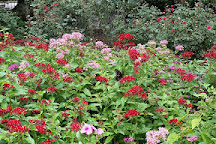 Helen's Garden, League City, United States