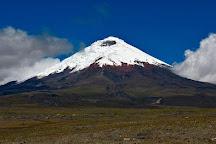Cotopaxi National Park, Cotopaxi Province, Ecuador