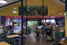 Daintree Discovery Centre, Cow Bay, Australia