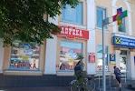 Райффайзен банк Аваль. Центральне Ніжинське відділення на фото Нежина