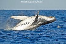 Albany Ocean Adventures, Albany, Australia