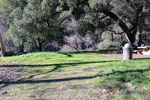 Alum Rock Park, San Jose, United States