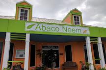Abaco Neem, Marsh Harbour, Bahamas