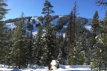 Loup Loup Ski Bowl, Omak, United States