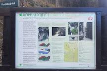 Bordalsgjelet Gorge, Voss Municipality, Norway