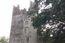 Castle Matrix, Adare, Ireland