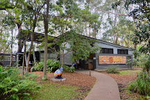 Koala Hospital, Port Macquarie, Australia