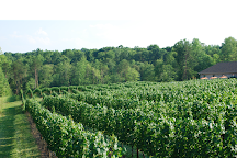 Cellar 4201 Vineyard, East Bend, United States