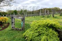 Truro Vineyards of Cape Cod, North Truro, United States
