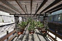 Jardim Botanico de Sao Paulo, Sao Paulo, Brazil