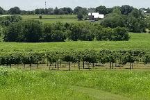 Pleasant Hill Winery, Brenham, United States