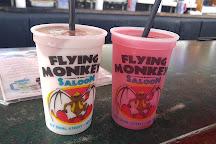 Flying Monkeys, Key West, United States