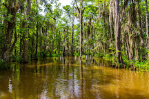 Pearl River Eco Tours, Slidell, United States
