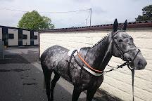 Market Rasen Racecourse, Market Rasen, United Kingdom