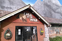 Call of the Wild Museum, Gaylord, United States