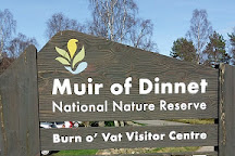 Muir of Dinnet National Nature Reserve, Dinnet, United Kingdom