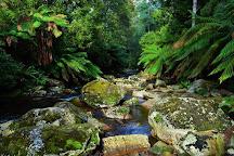 Halls Falls, Perth (Tasmania), Australia