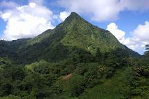 Mount Gimie, St. Lucia