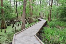 Spring Creek Greenway, Spring, United States