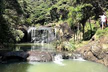 Lake Wainamu, Waitakere City, New Zealand
