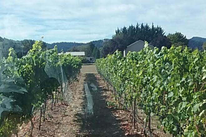 Tesoaria Vineyard & Winery, Roseburg, United States